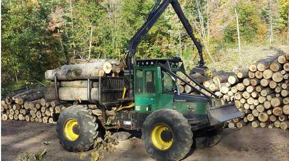 Timberjack 230A Forwarder   Minnesota   Forestry Equipment Sales