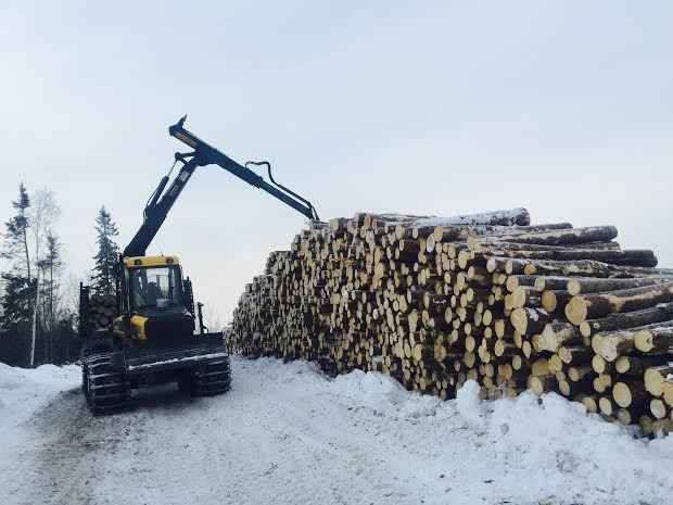 Ponsse Buffalo King Forwarder ***SOLD***