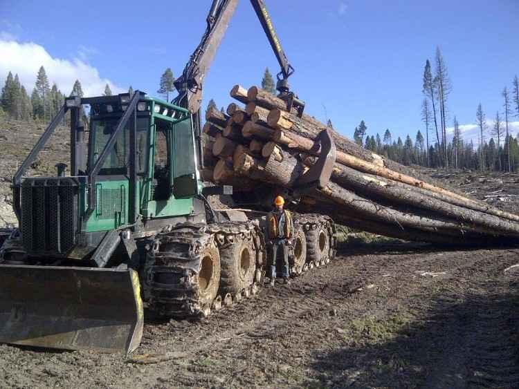 Timberjack 933C Forwarder | British Columbia | Forestry Equipment Sales